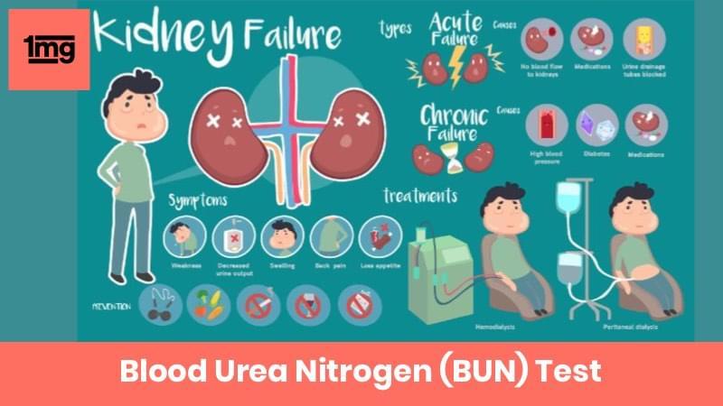 Blood Urea Nitrogen