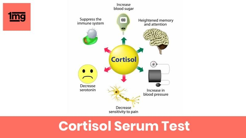 Cortisol Serum (7 to 9 AM)