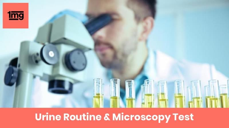 Urine Routine & Microscopy