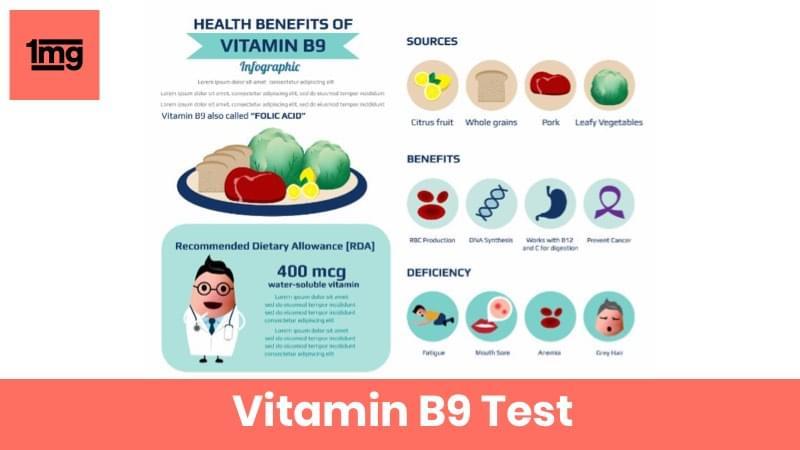 Vitamin B 9