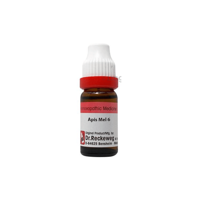 Dr. Reckeweg Apis Mell Dilution 6 CH