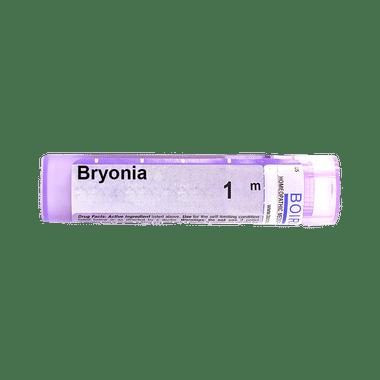 Boiron Bryonia Pellets 1M